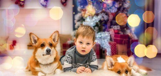 Новогодний чек - лист для ребенка