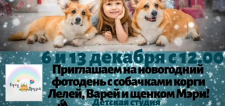 Novogodnij-fotoset.png